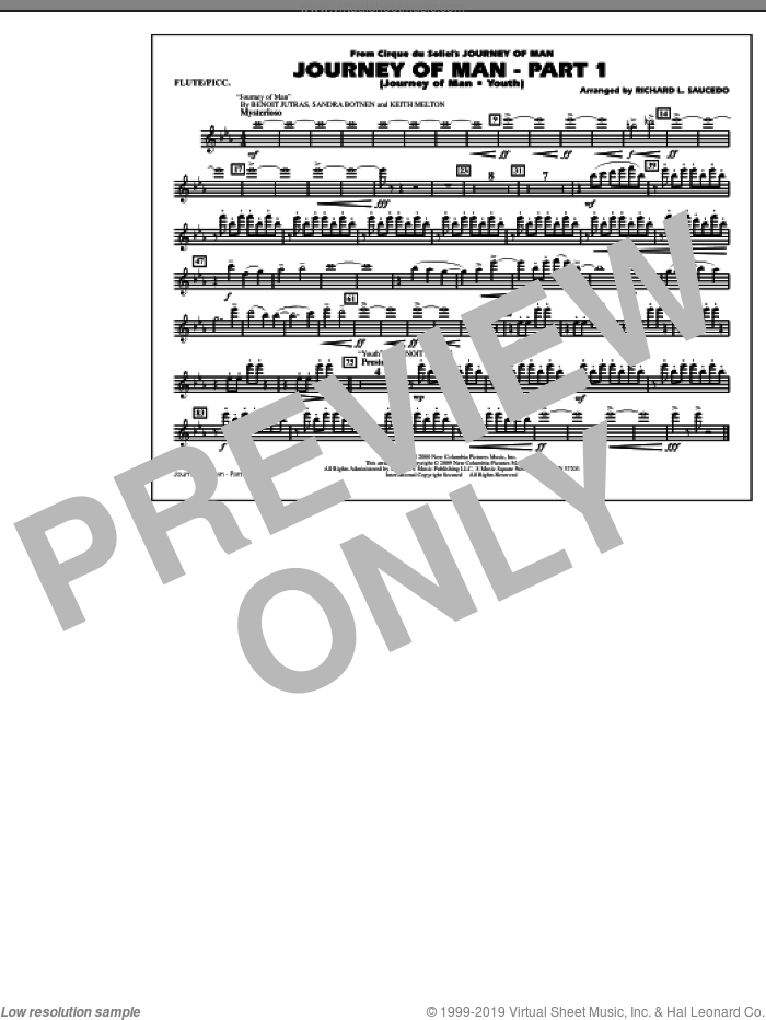 Journey of Man, part 1 (journey of man: youth) sheet music for marching band (flute/piccolo) by Richard L. Saucedo, Benoit Jutras, Keith Melton and Sandra Botnen, intermediate skill level