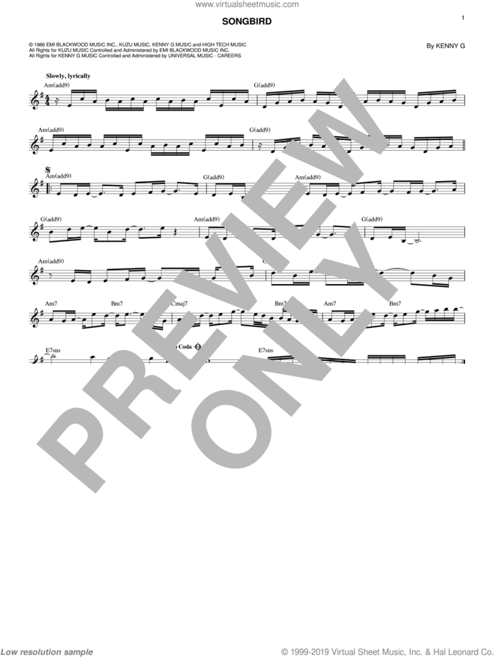 Songbird sheet music for voice and other instruments (fake book) by Kenny G, intermediate skill level