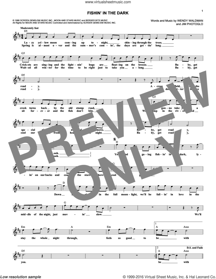 Fishin' In The Dark sheet music for voice and other instruments (fake book) by Nitty Gritty Dirt Band, Jim Photoglo and Wendy Waldman, intermediate skill level