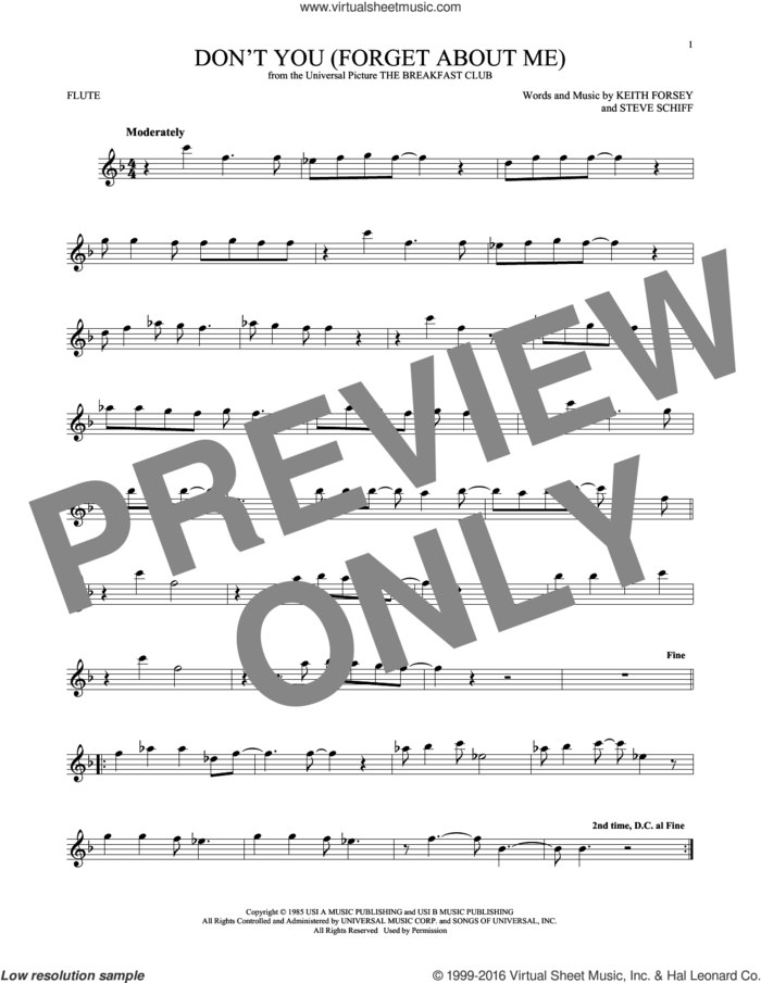 Don't You (Forget About Me) sheet music for flute solo by Simple Minds, Hawk Nelson, Keith Forsey and Steve Schiff, intermediate skill level