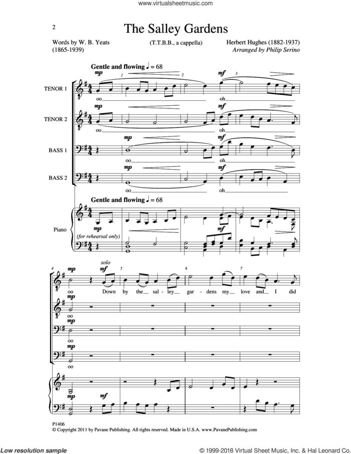 The Salley Gardens sheet music for choir (TTBB: tenor, bass) by William Butler Yeats, Herbert Hughes and Philip Serino, intermediate skill level