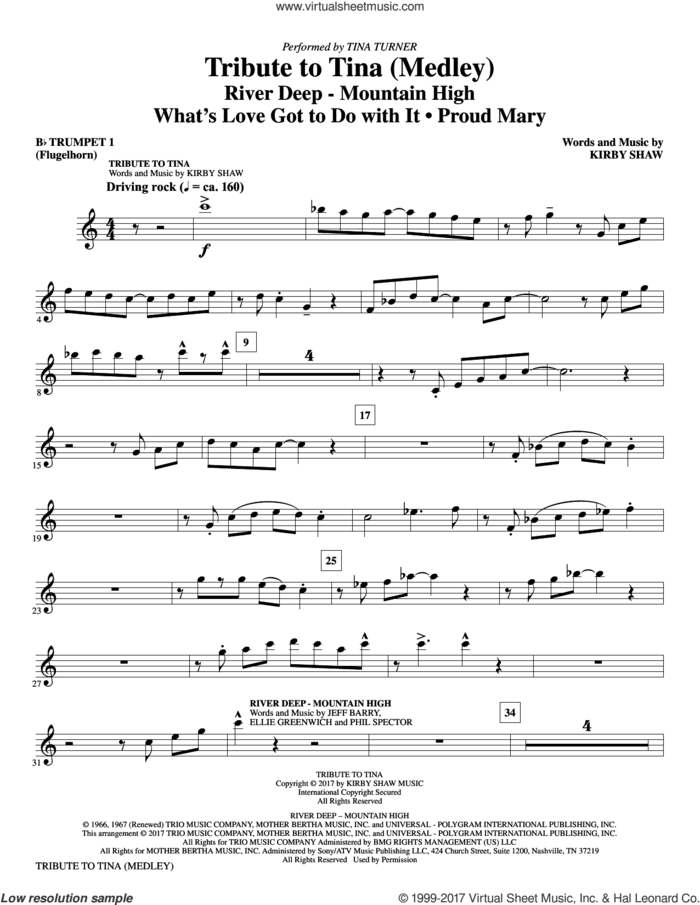 Tribute to Tina (complete set of parts) sheet music for orchestra/band by Kirby Shaw, Ike & Tina Turner, John Fogerty and Tina Turner, intermediate skill level