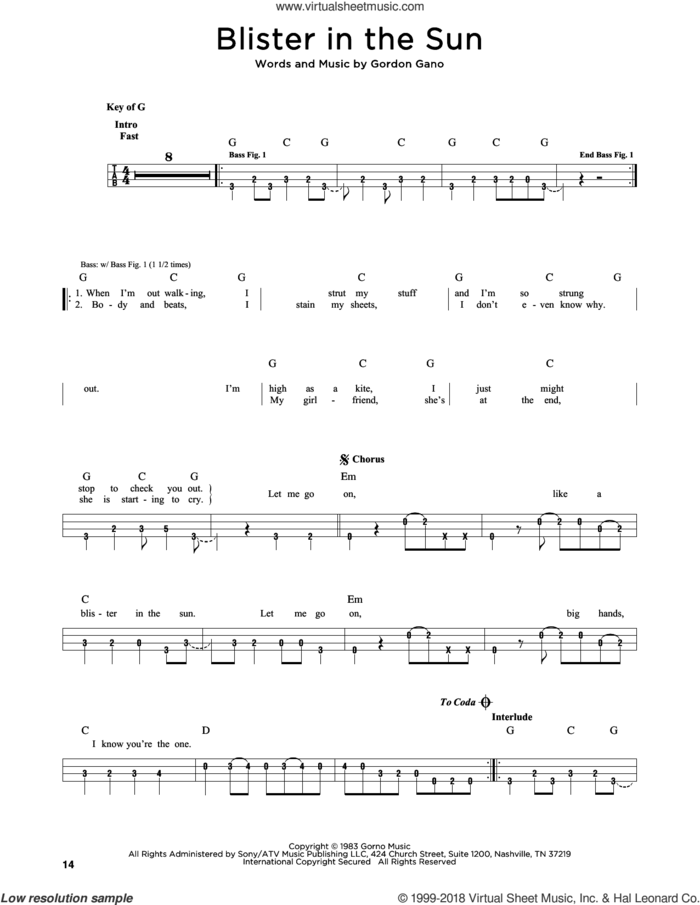 Blister In The Sun sheet music for bass solo by Violent Femmes and Gordon Gano, intermediate skill level