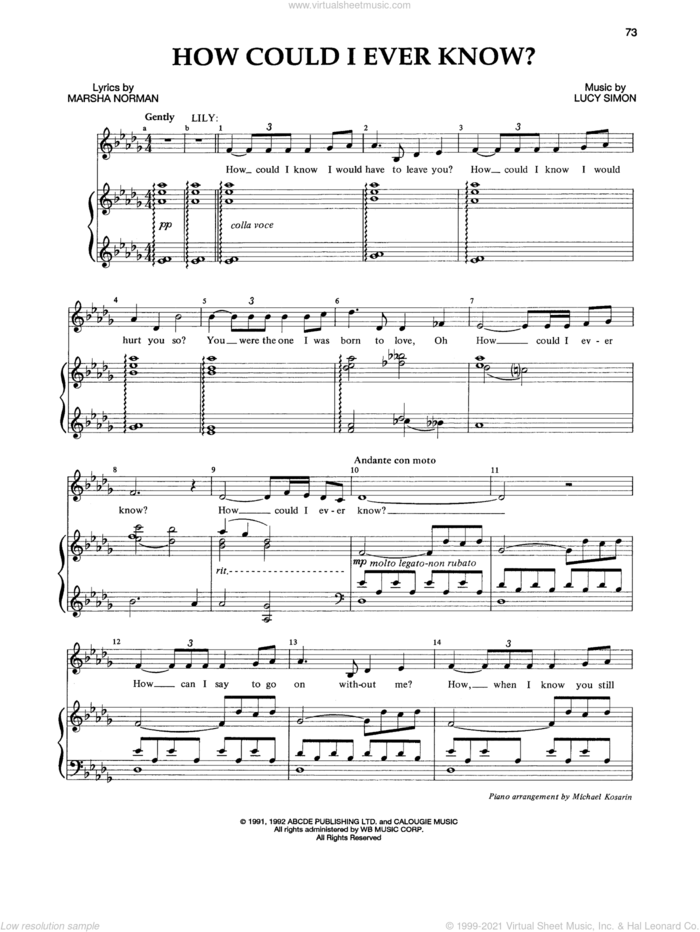How Could I Ever Know? sheet music for voice and piano by Lucy Simon, Marsha Norman and Marsha Norman & Lucy Simon, intermediate skill level