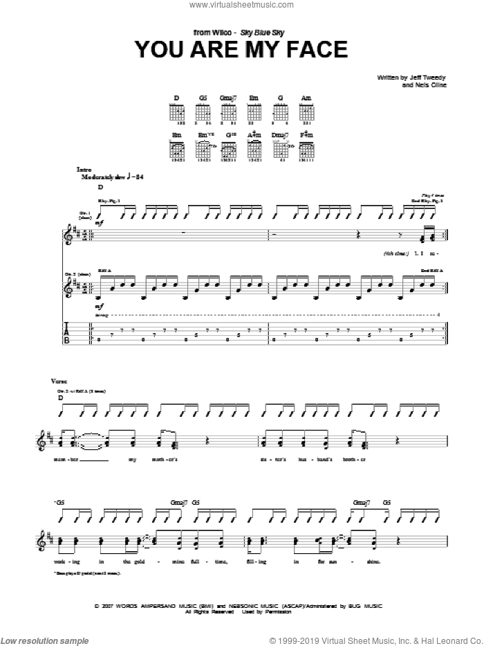 You Are My Face sheet music for guitar (tablature) by Wilco, Jeff Tweedy and Nels Cline, intermediate skill level