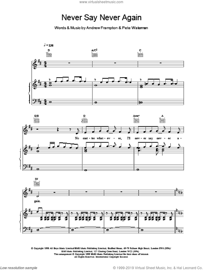 Never Say Never Again sheet music for voice, piano or guitar by Steps. Score Image Preview.