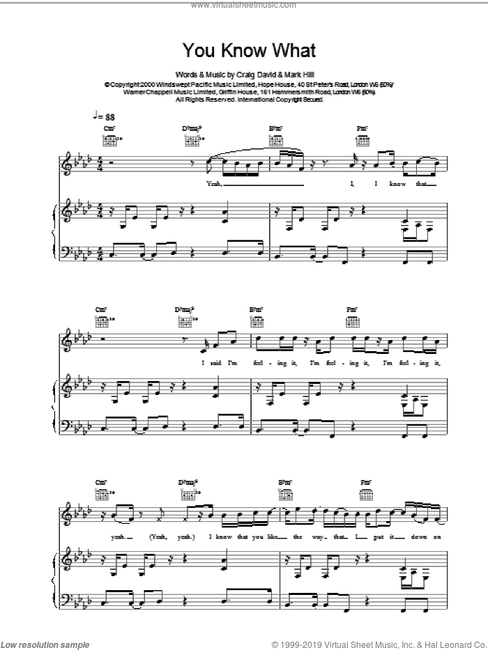 You Know What sheet music for voice, piano or guitar by Craig David, intermediate voice, piano or guitar. Score Image Preview.