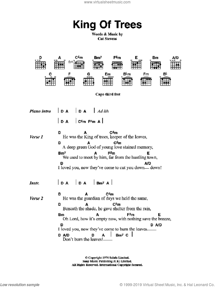 King Of Trees sheet music for guitar (chords) by Cat Stevens, intermediate skill level