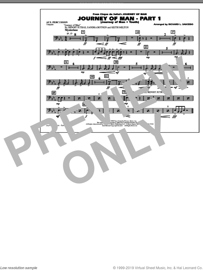 Journey of Man, part 1 (journey of man: youth) sheet music for marching band (aux percussion) by Benoit Jutras