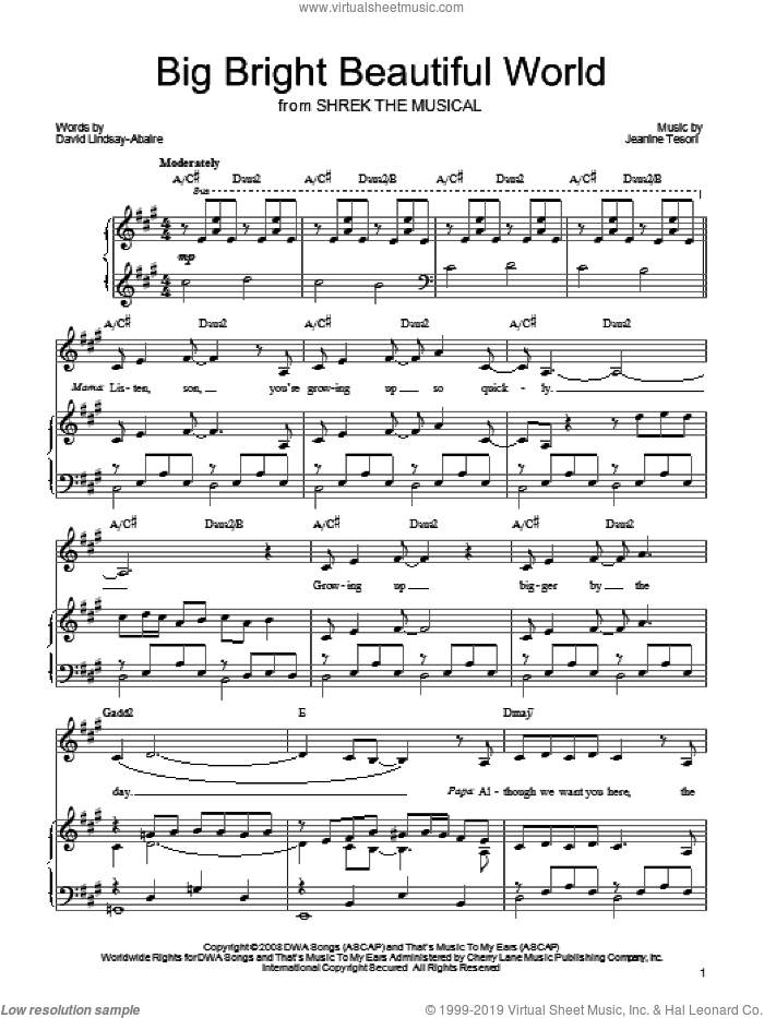 Big Bright Beautiful World sheet music for voice, piano or guitar by Shrek The Musical, David Lindsay-Abaire and Jeanine Tesori, intermediate skill level