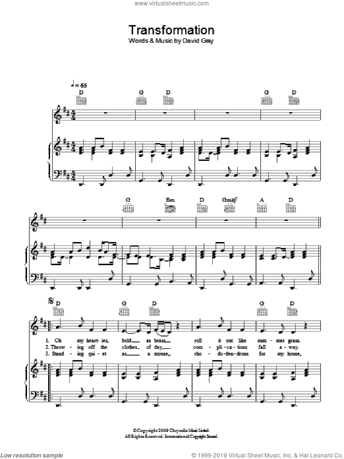 Transformation sheet music for voice, piano or guitar by David Gray. Score Image Preview.