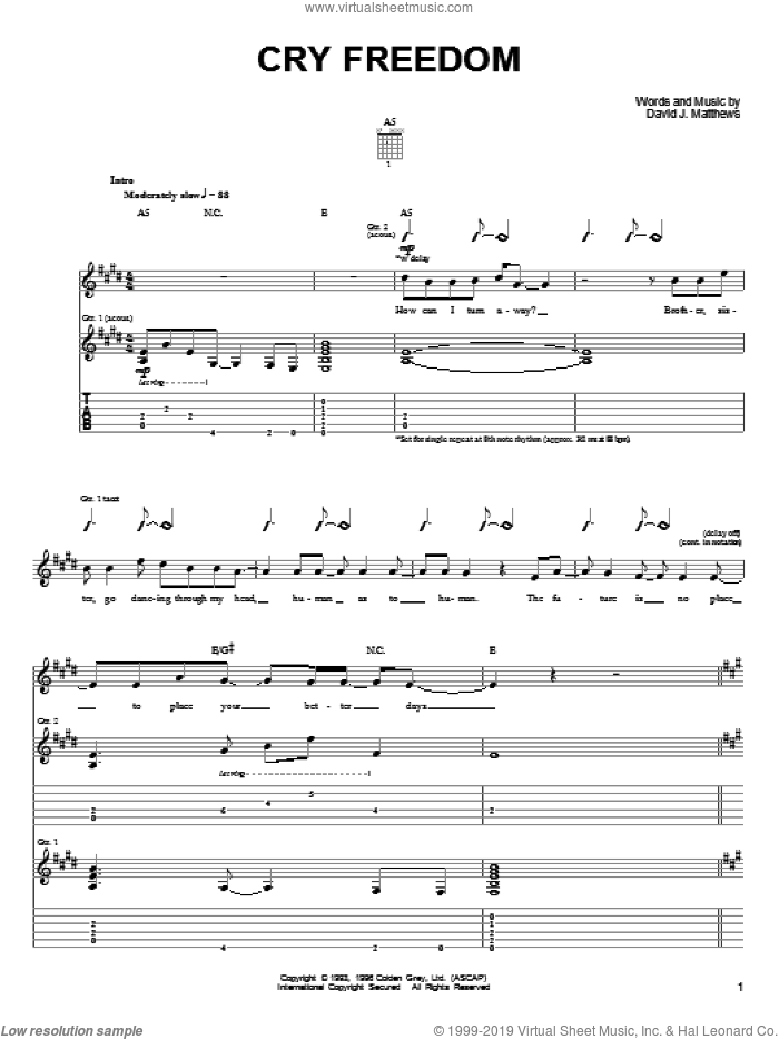 Cry Freedom sheet music for guitar (tablature) by Dave Matthews & Tim Reynolds, Dave Matthews and Dave Matthews Band. Score Image Preview.