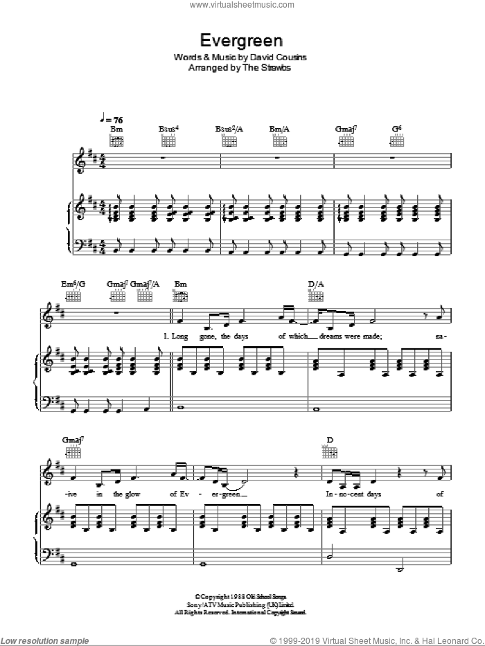 Evergreen sheet music for voice, piano or guitar by The Strawbs and David Cousins, intermediate