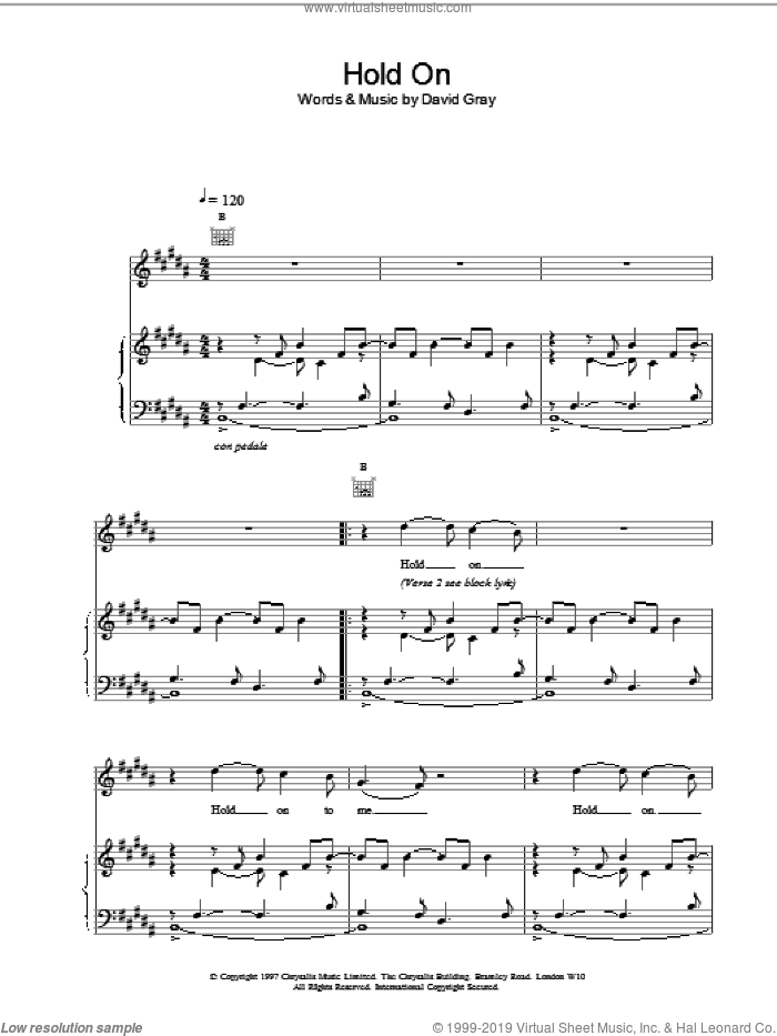 Hold On sheet music for voice, piano or guitar by David Gray. Score Image Preview.