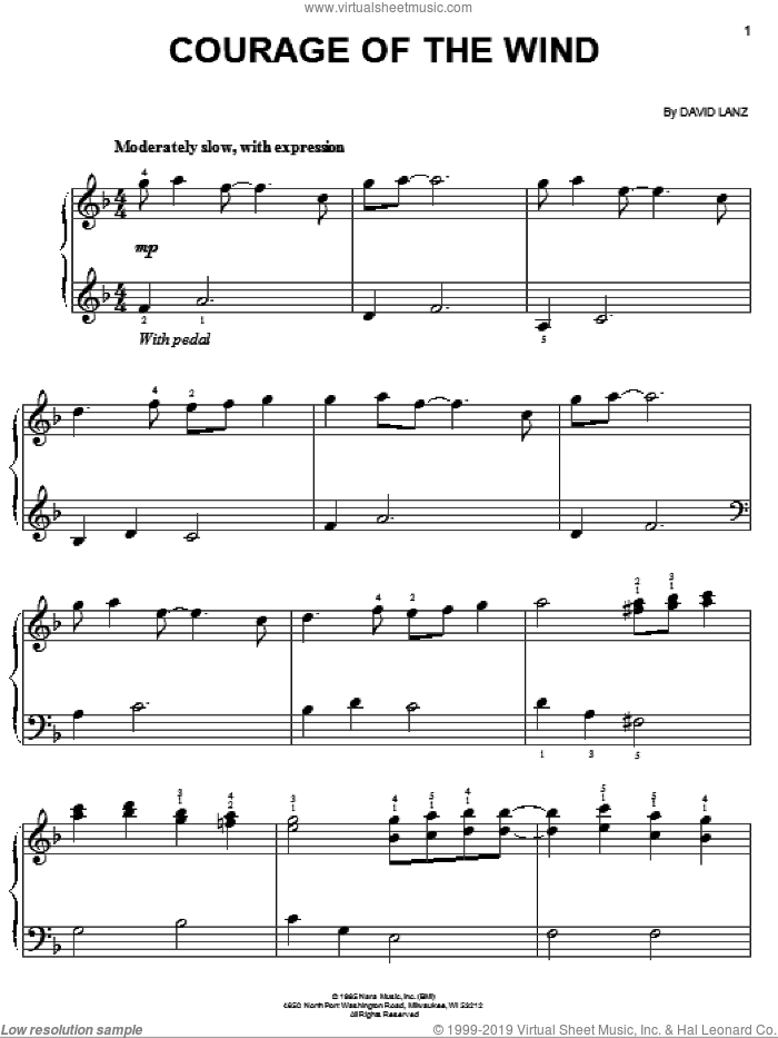 Courage Of The Wind sheet music for piano solo by David Lanz, easy skill level