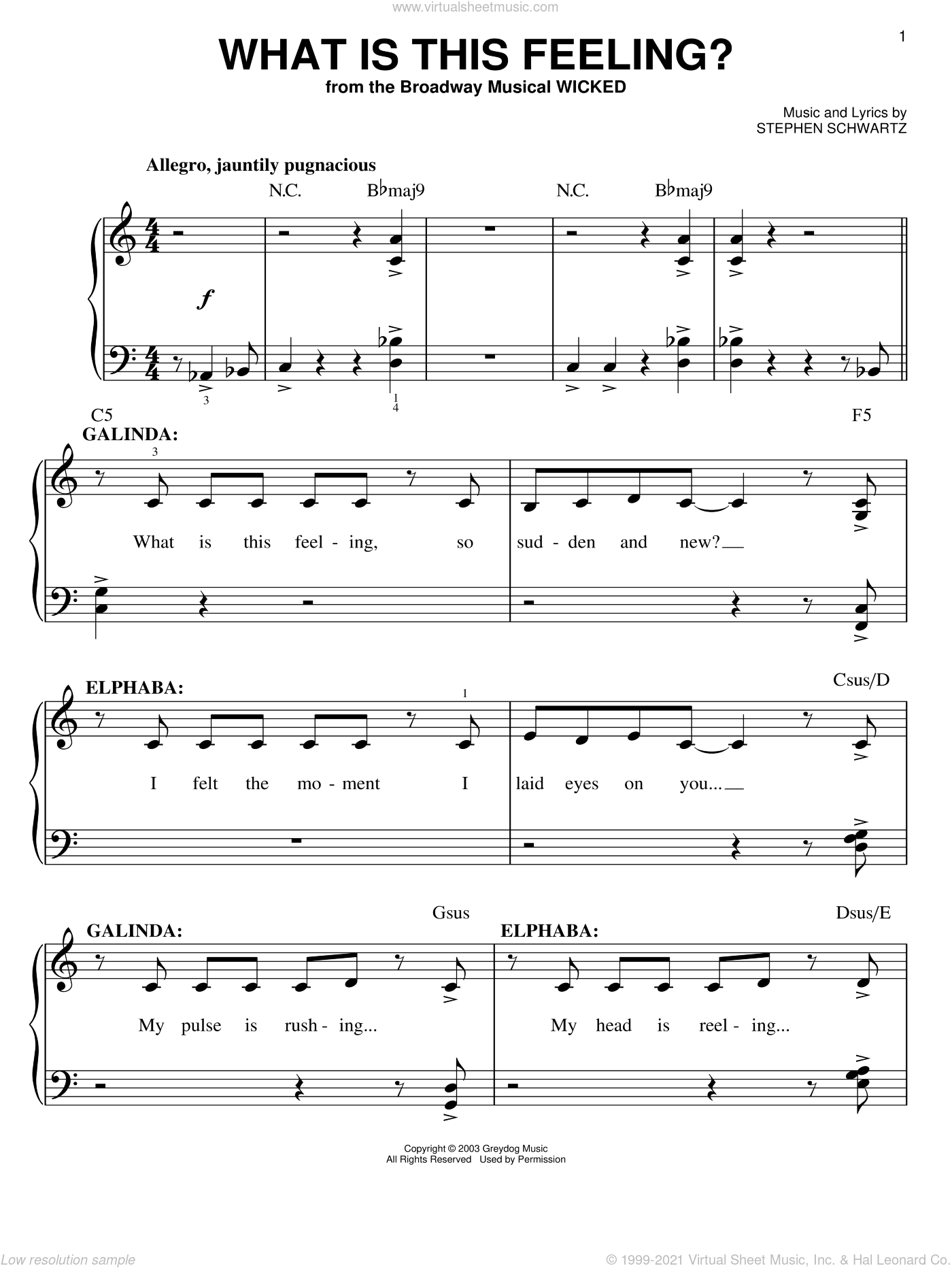 What Is This Feeling? sheet music for piano solo by Stephen Schwartz. Score Image Preview.