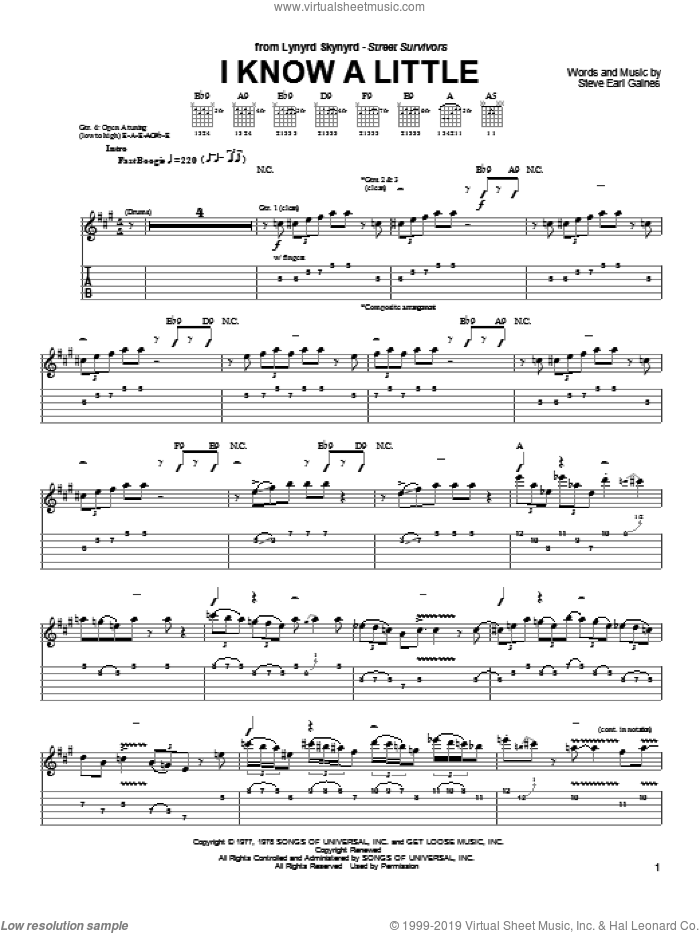 I Know A Little sheet music for guitar solo (chords) by Lynyrd Skynyrd, easy guitar (chords). Score Image Preview.