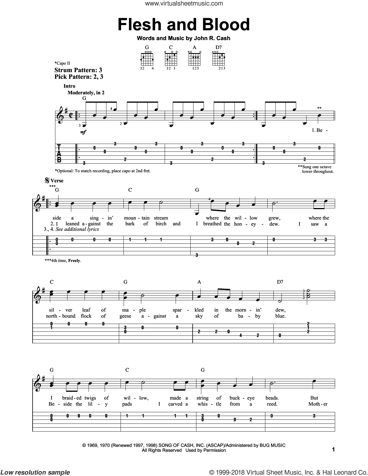 Flesh And Blood sheet music for guitar solo (easy tablature) by Johnny Cash. Score Image Preview.