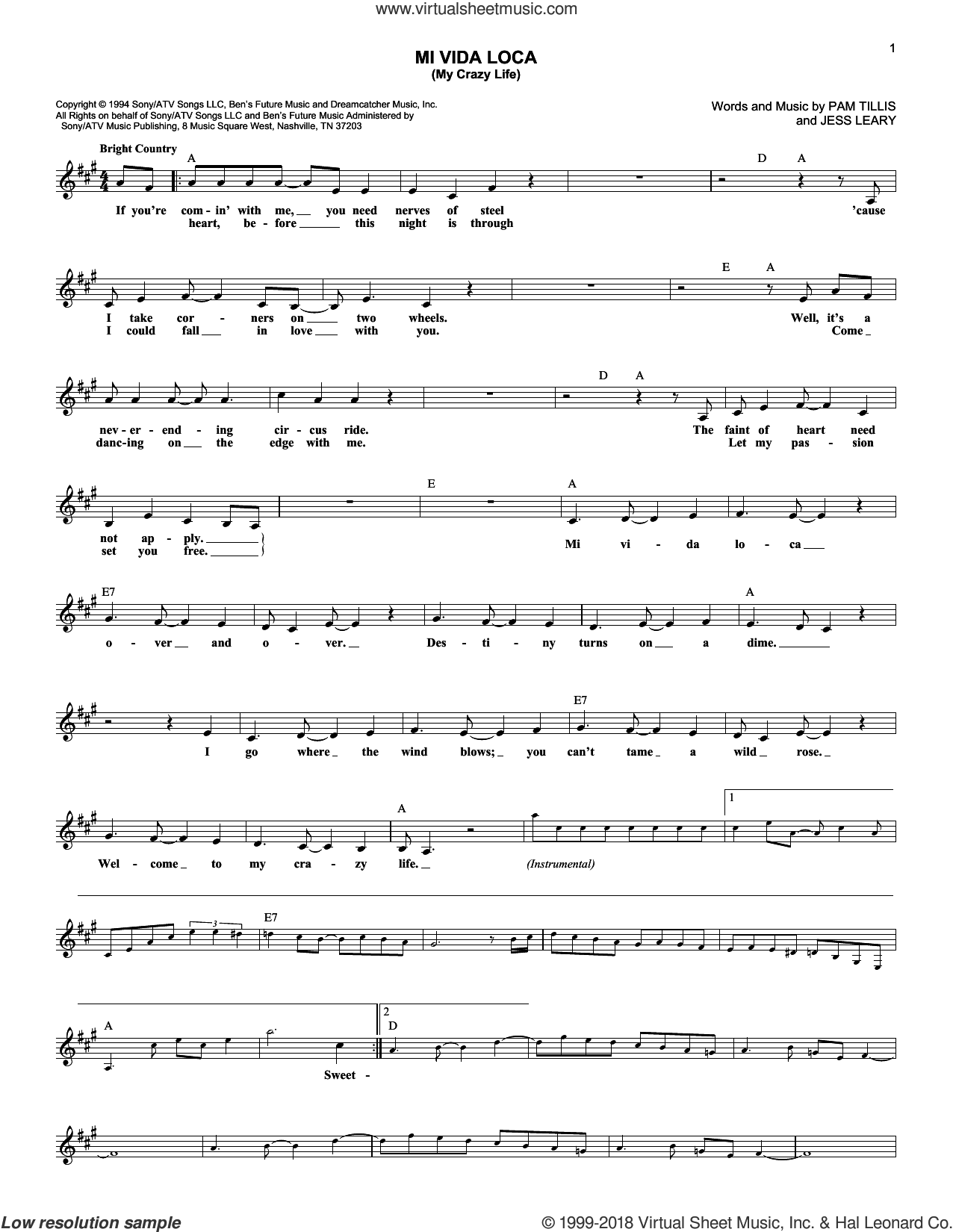 Mi Vida Loca (My Crazy Life) sheet music for voice and other instruments (fake book) by Pam Tillis and Jess Leary, intermediate skill level