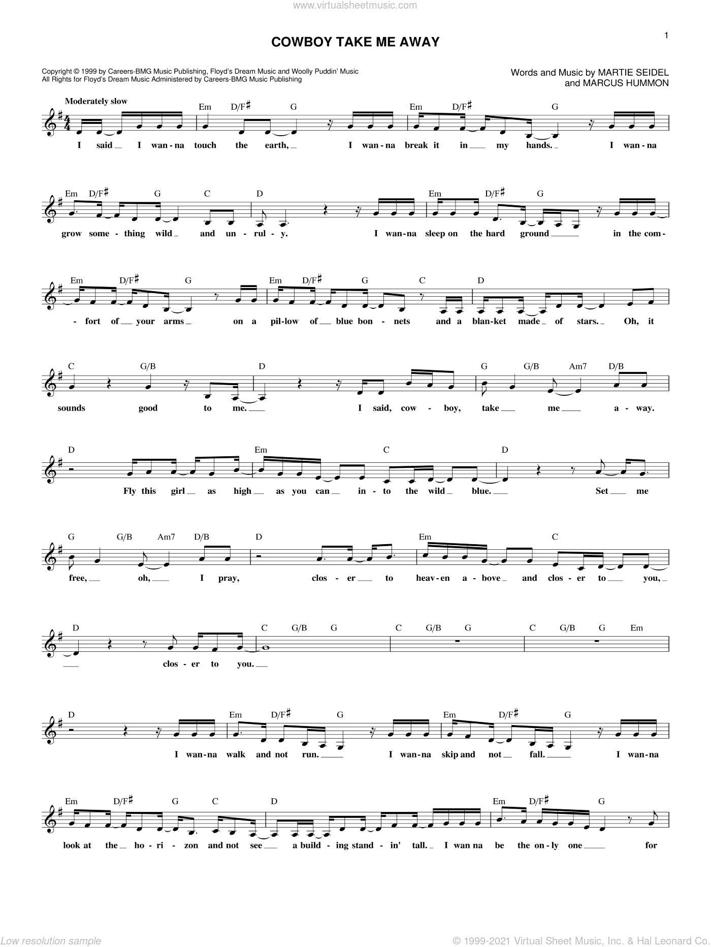 Cowboy Take Me Away sheet music for voice and other instruments (fake book) by Martie Seidel, Dixie Chicks and Marcus Hummon. Score Image Preview.