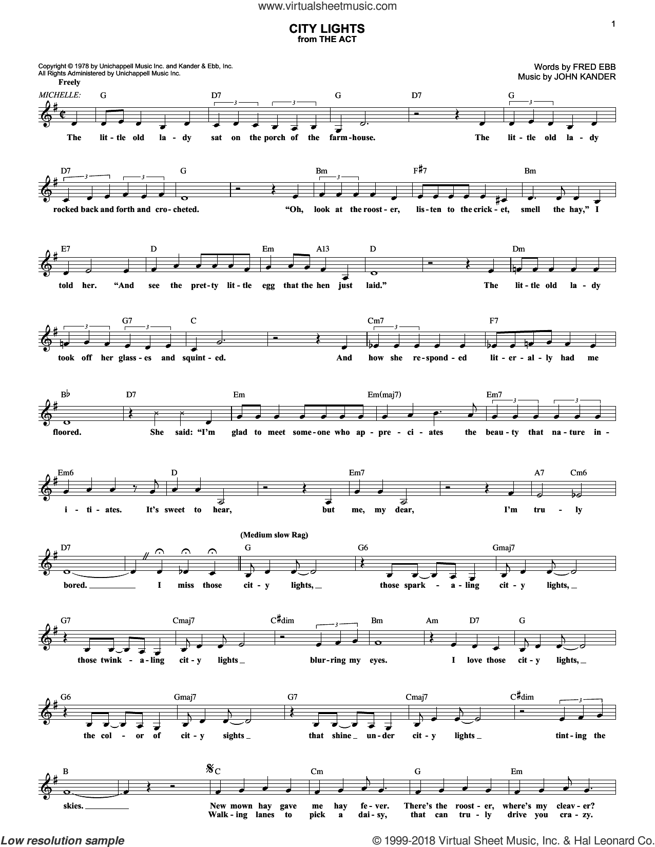 City Lights sheet music for voice and other instruments (fake book) by Kander & Ebb, Fred Ebb and John Kander. Score Image Preview.