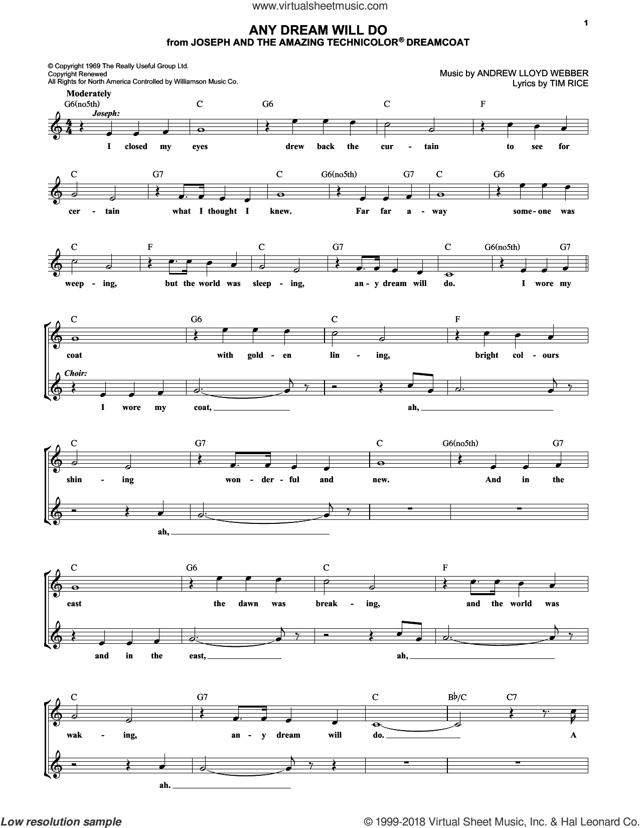 Any Dream Will Do sheet music for voice and other instruments (fake book) by Andrew Lloyd Webber and Tim Rice, intermediate. Score Image Preview.