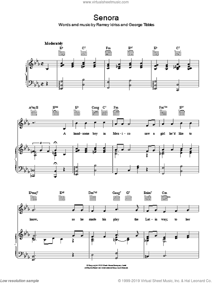 Senora sheet music for voice, piano or guitar by Ramey Idriss. Score Image Preview.