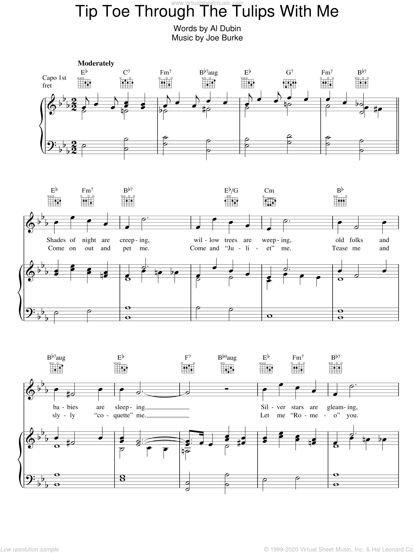 Tip Toe Through The Tulips With Me sheet music for voice, piano or guitar by Joe Burke and Al Dubin, intermediate skill level