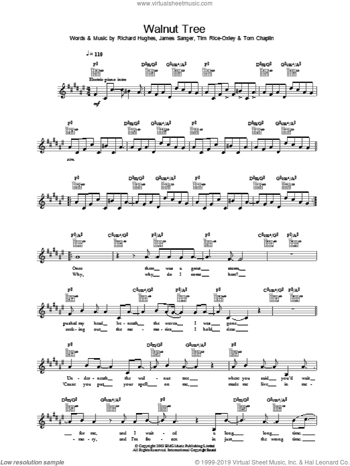 Walnut Tree sheet music for voice and other instruments (fake book) by Tim Rice-Oxley, intermediate voice. Score Image Preview.