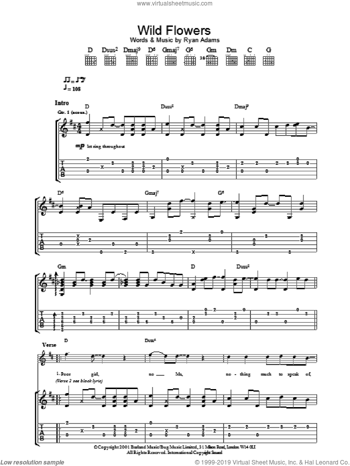 Wild Flowers sheet music for guitar (tablature) by Ryan Adams