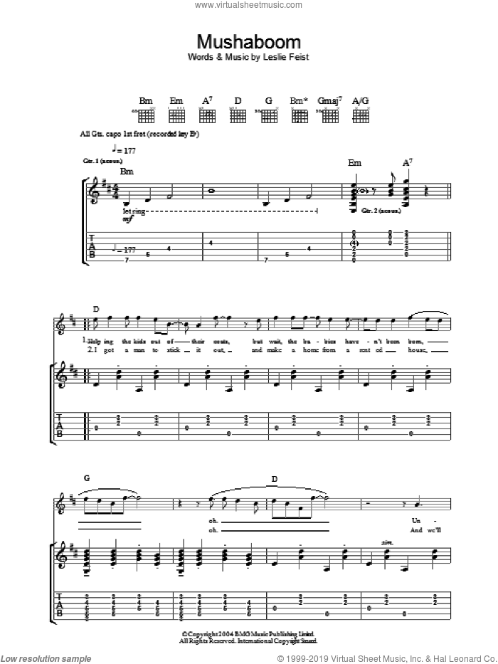 Mushaboom sheet music for guitar (tablature) by Leslie Feist, intermediate guitar (tablature). Score Image Preview.