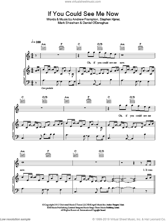 If You Could See Me Now sheet music for voice, piano or guitar by The Script and Andrew Frampton. Score Image Preview.