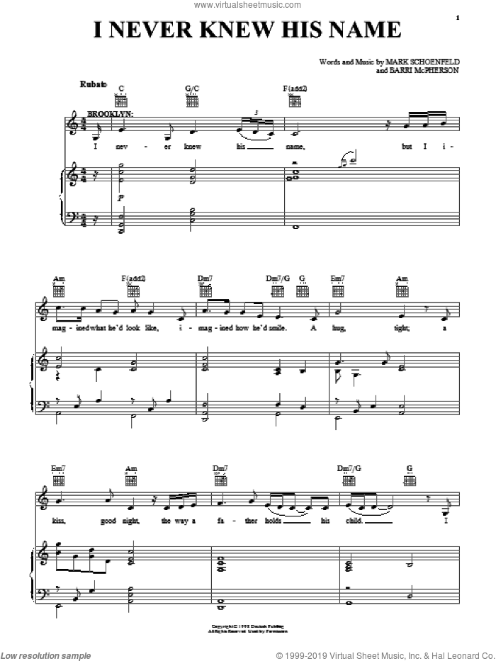 I Never Knew His Name sheet music for voice, piano or guitar by Brooklyn The Musical, Barri McPherson and Mark Schoenfeld, intermediate skill level