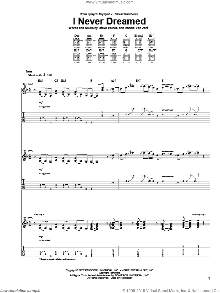 I Never Dreamed sheet music for guitar (tablature) by Steve Gaines