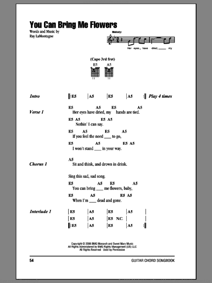 You Can Bring Me Flowers sheet music for guitar (chords) by Ray LaMontagne, intermediate skill level