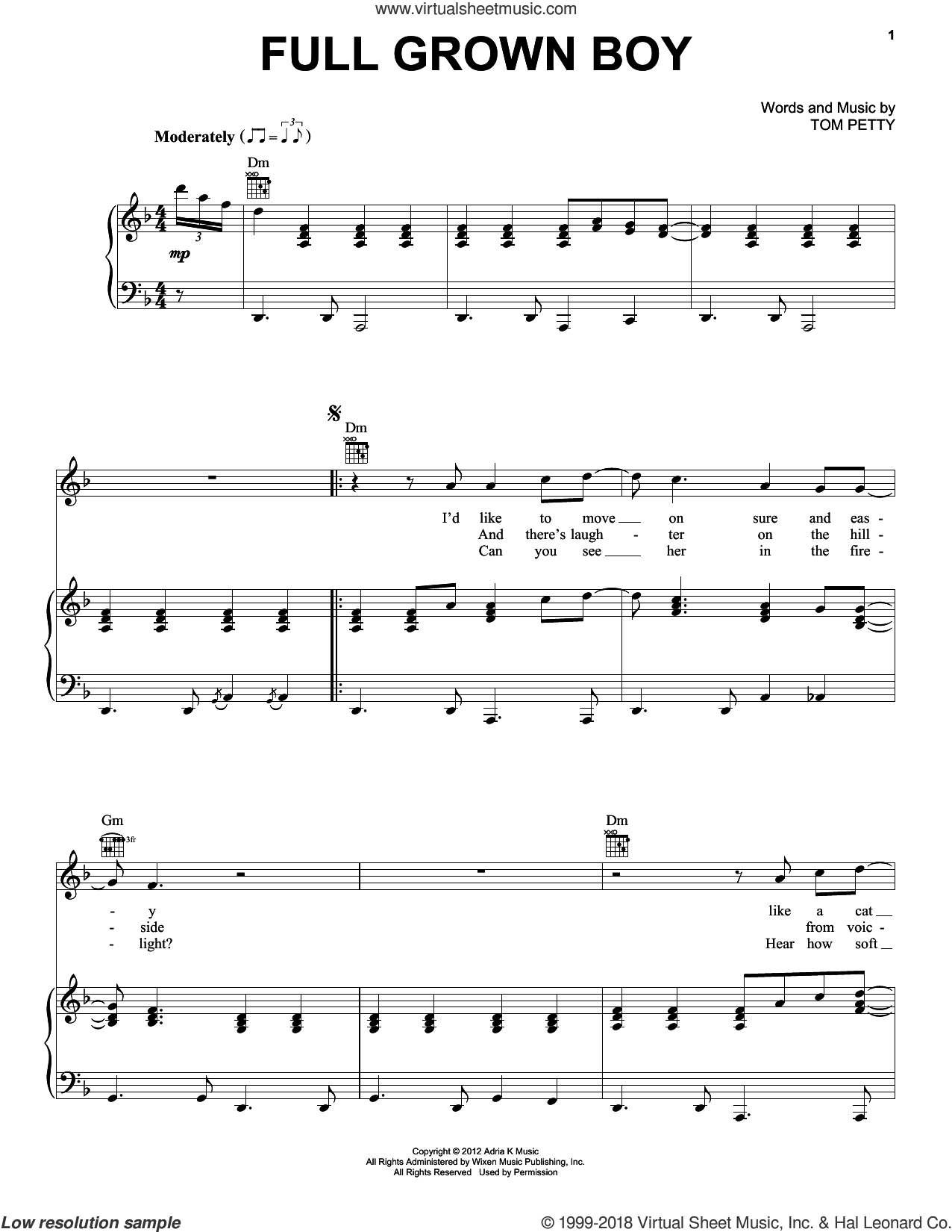 Full Grown Boy sheet music for voice, piano or guitar by Tom Petty and Tom Petty And The Heartbreakers, intermediate skill level