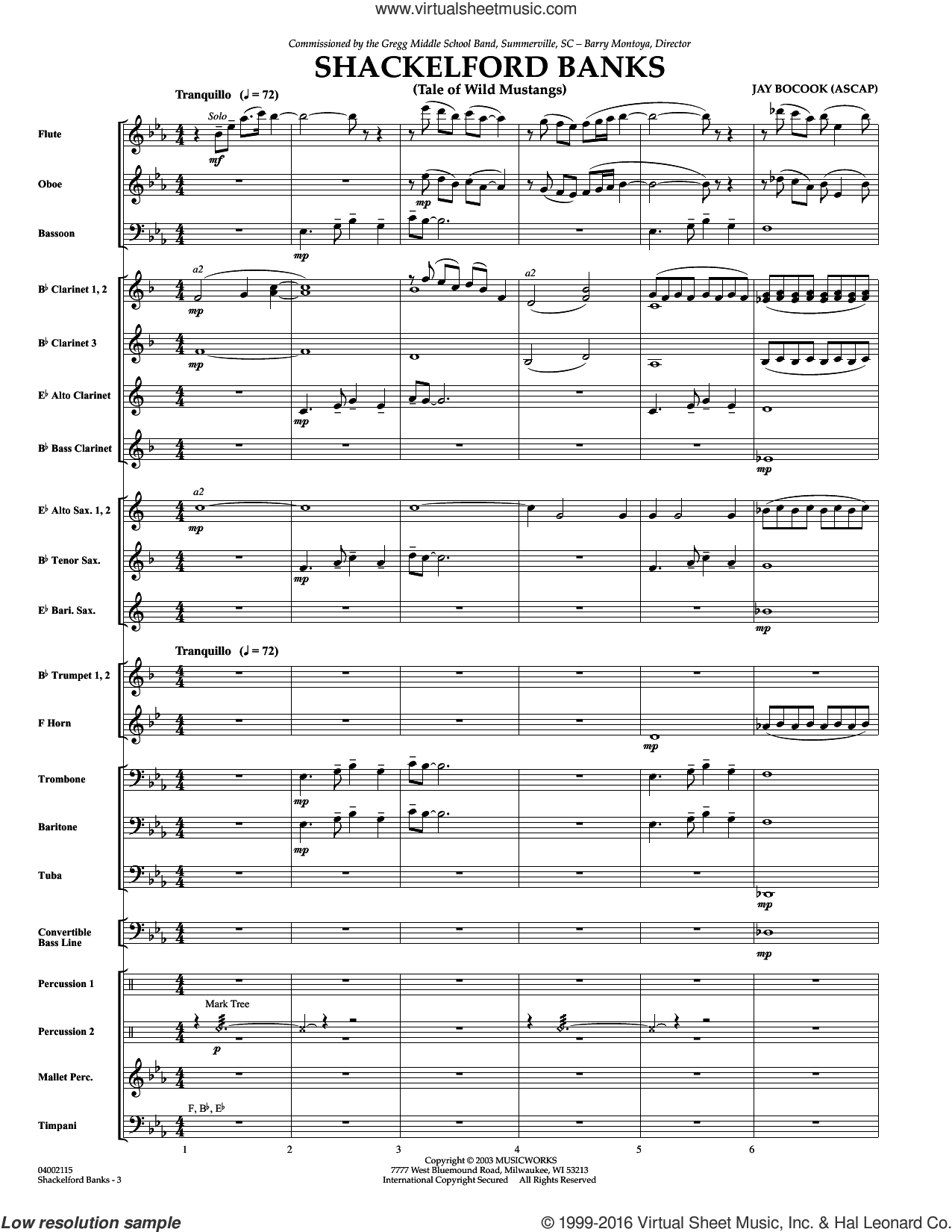 Shackelford Banks sheet music for concert band (full score) by Jay Bocook. Score Image Preview.