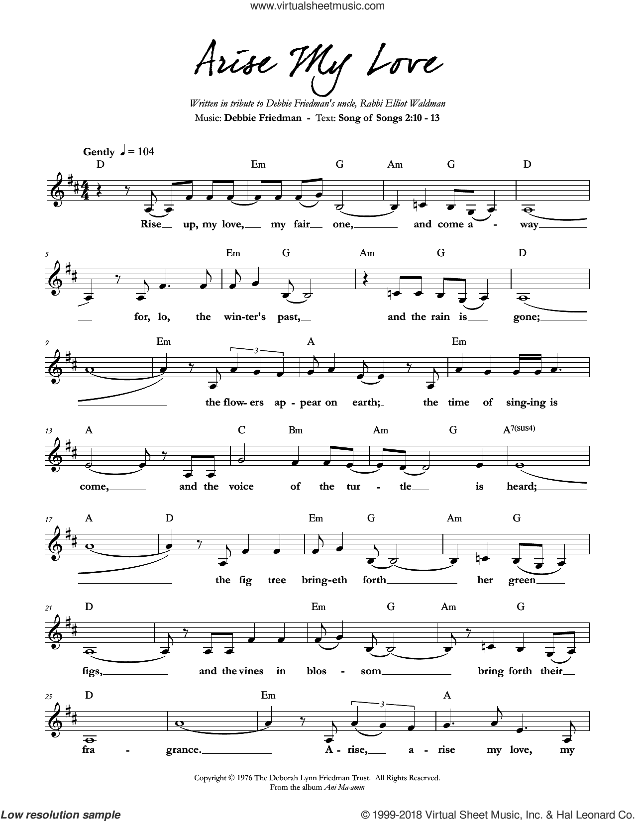 Arise My Love sheet music for voice and other instruments (fake book) by Debbie Friedman, intermediate skill level