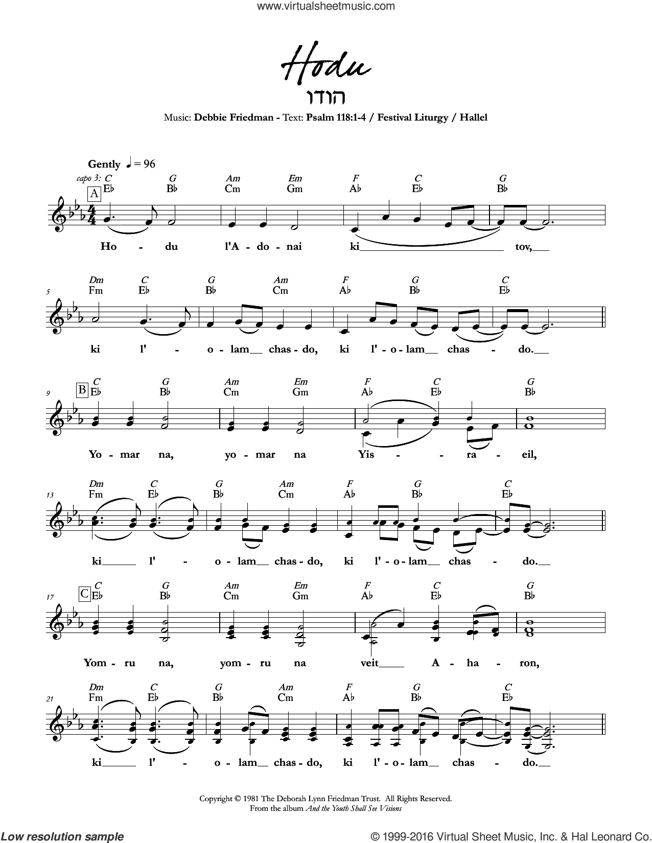 Hodu sheet music for voice and other instruments (fake book) by Debbie Friedman, intermediate skill level
