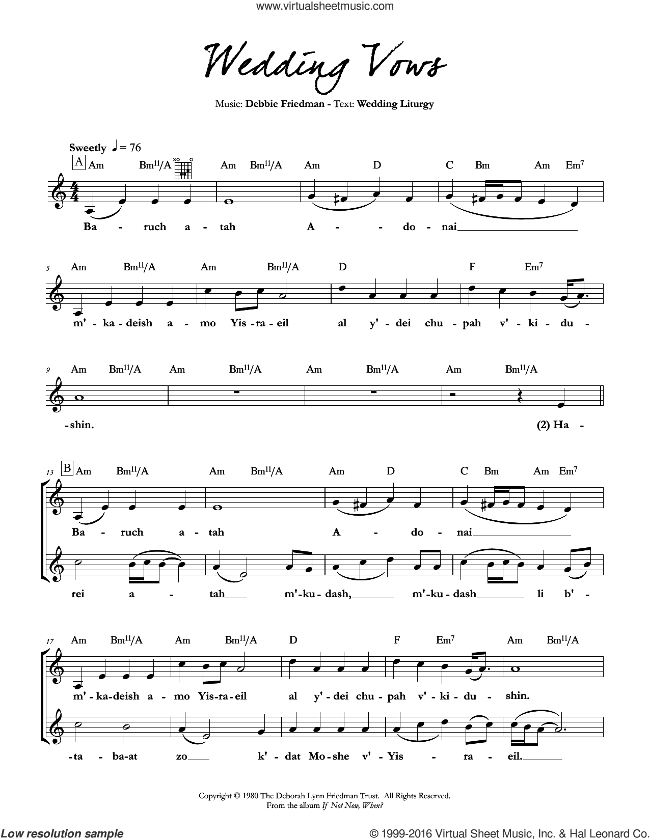 We the People sheet music for voice and other instruments (fake book) by Debbie Friedman