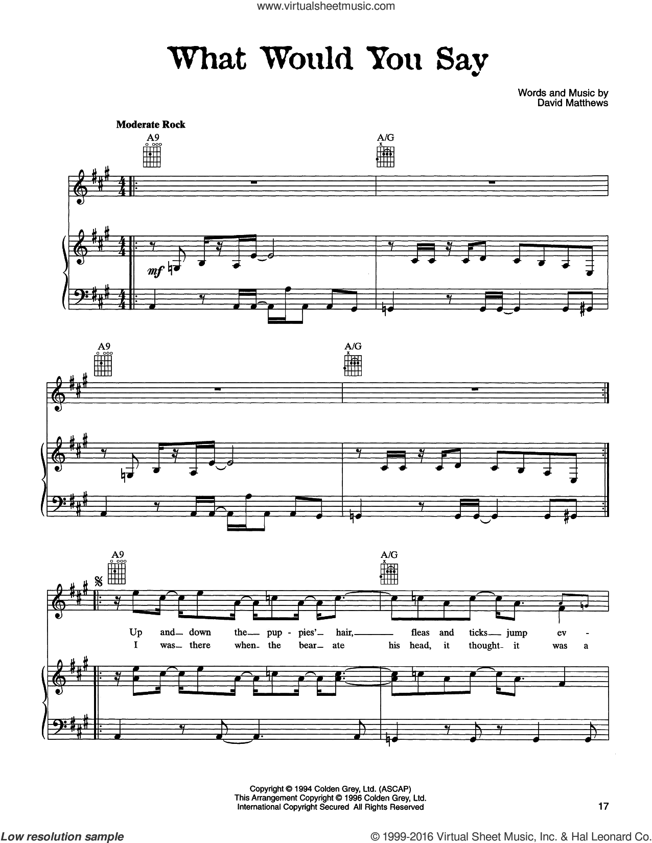 What Would You Say sheet music for voice, piano or guitar by Dave Matthews Band, intermediate voice, piano or guitar. Score Image Preview.