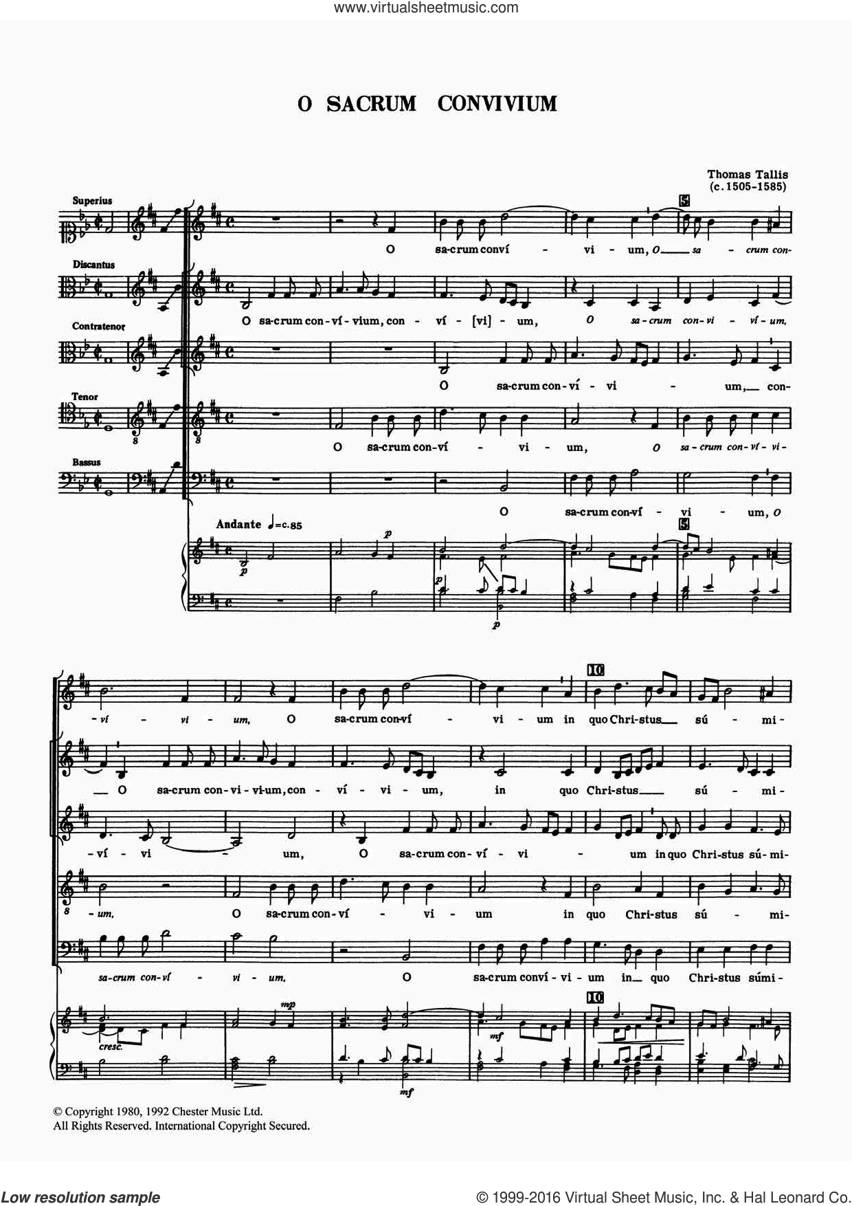 O Sacrum Convivium sheet music for voice, piano or guitar by Thomas Tallis, classical score, intermediate