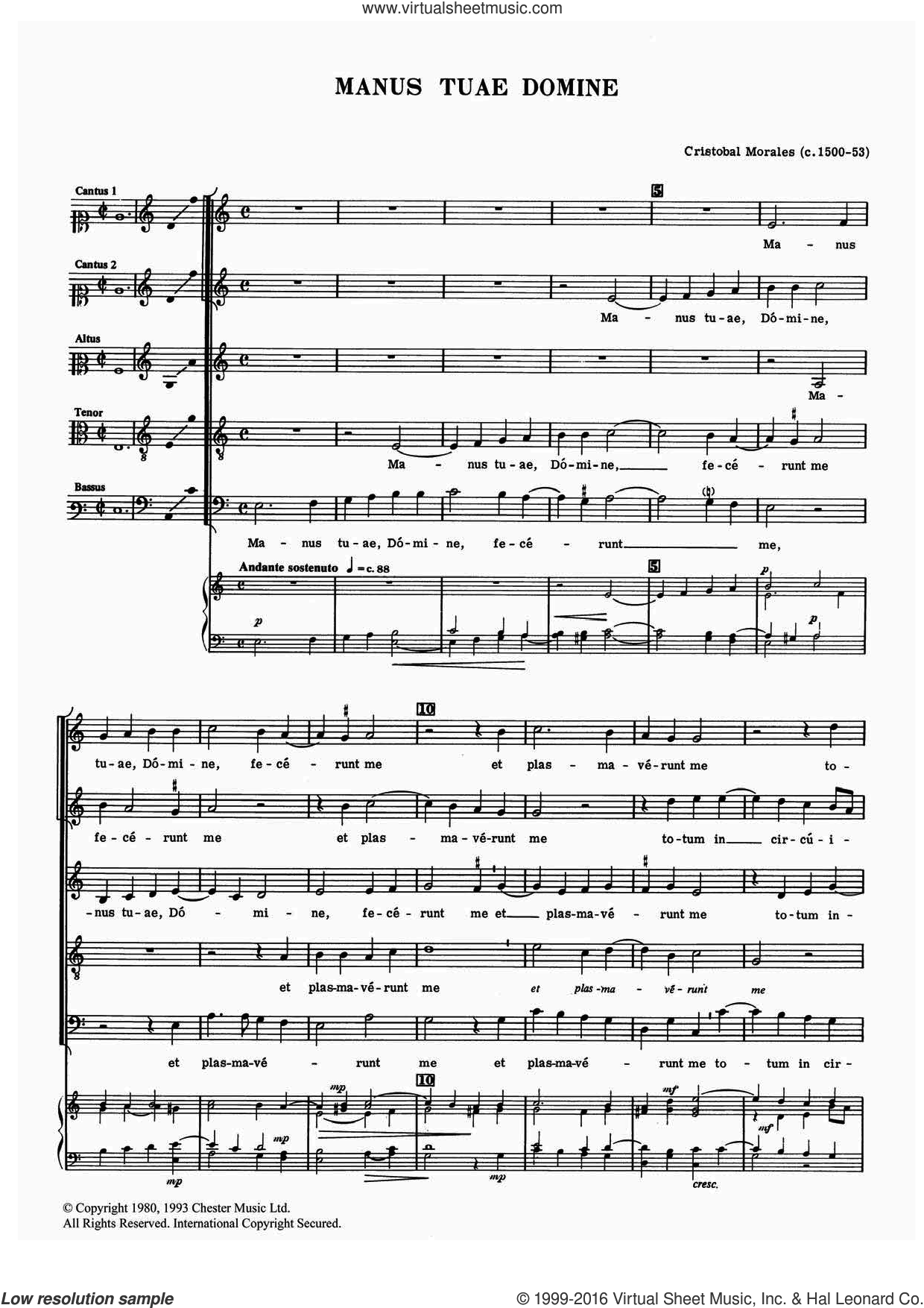 Manus Tuae Domine sheet music for voice, piano or guitar by Cristobal Morales, classical score, intermediate