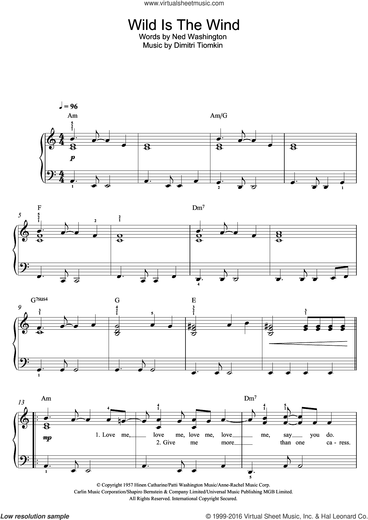 Wild Is The Wind sheet music for voice, piano or guitar by Ned Washington