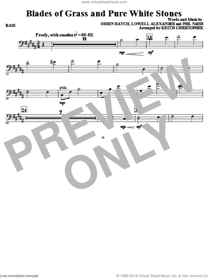 Blades Of Grass And Pure White Stones sheet music for orchestra/band (bass) by Phil Naish