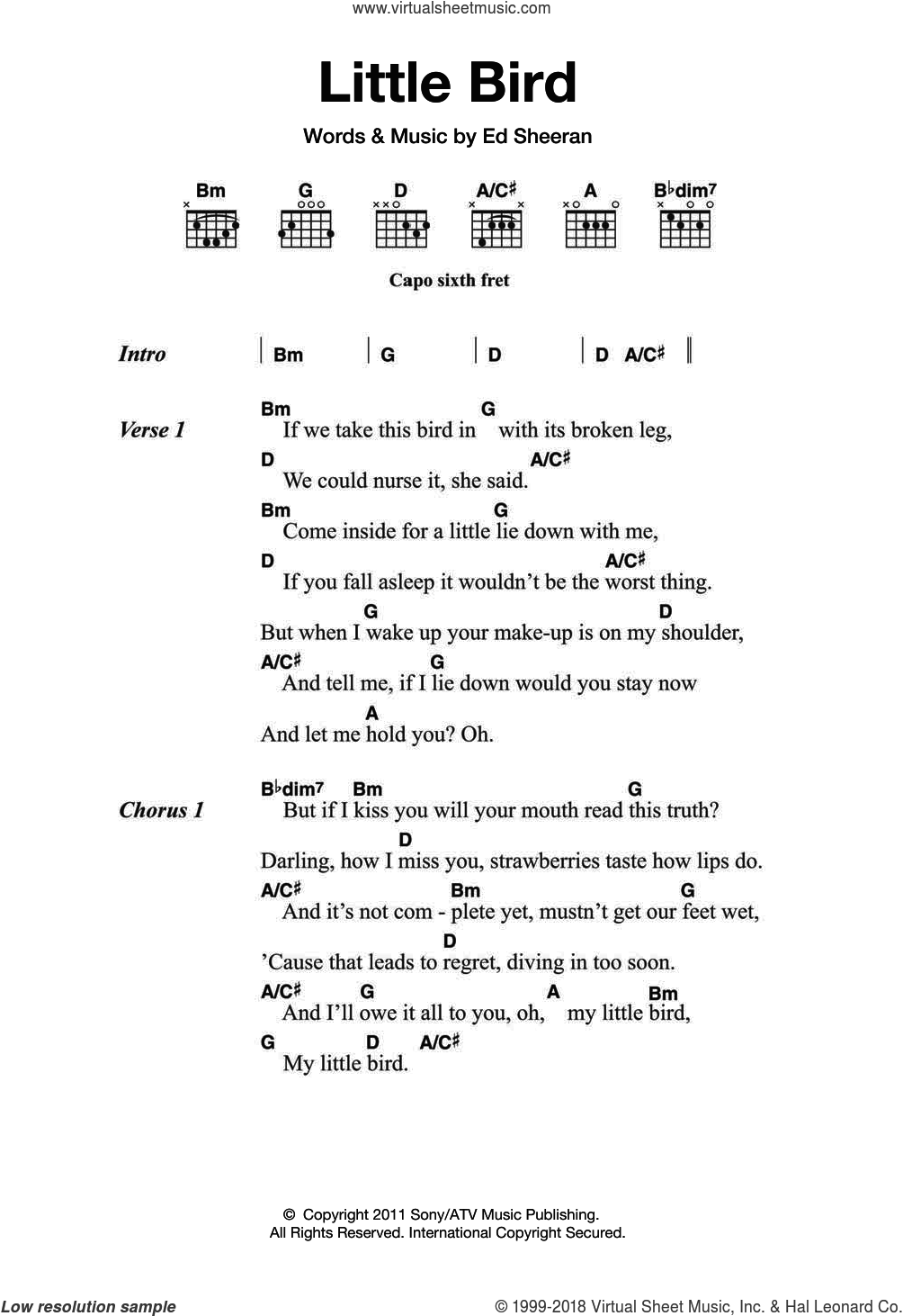 Sheeran Little Bird Sheet Music For Guitar Chords Pdf