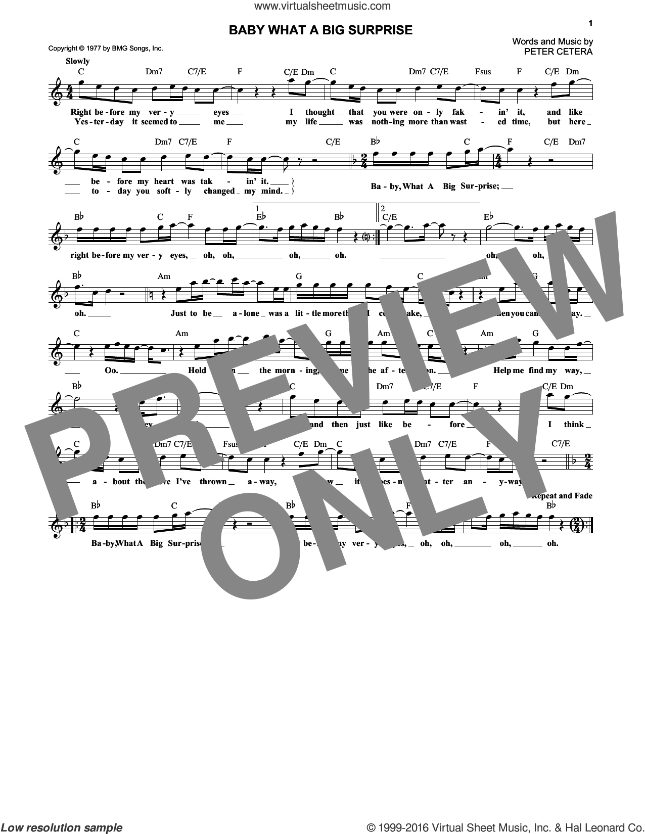 Baby What A Big Surprise sheet music for voice and other instruments (fake book) by Peter Cetera and Chicago. Score Image Preview.