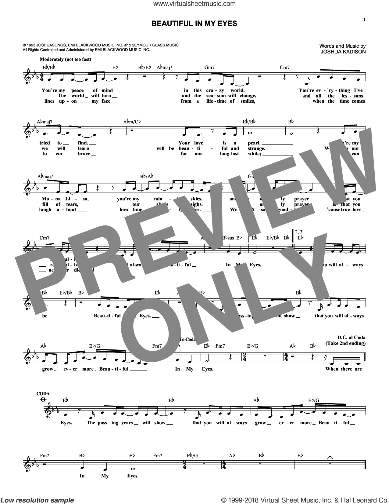 Beautiful In My Eyes sheet music for voice and other instruments (fake book) by Joshua Kadison, wedding score, intermediate voice. Score Image Preview.