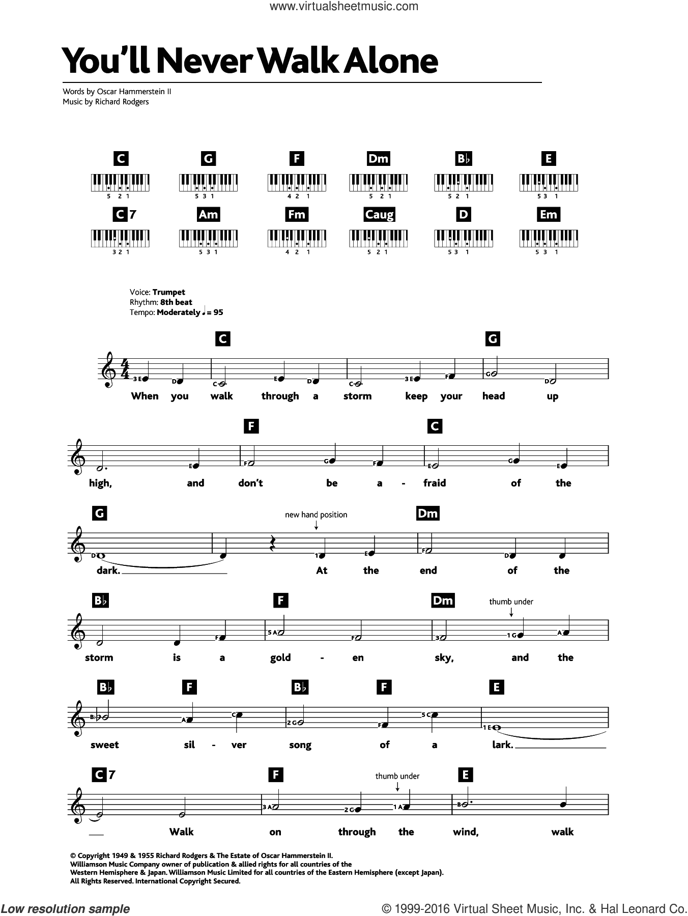 You'll Never Walk Alone (from Carousel) sheet music for piano solo (chords, lyrics, melody) by Rodgers & Hammerstein, Oscar II Hammerstein and Richard Rodgers, intermediate piano (chords, lyrics, melody). Score Image Preview.