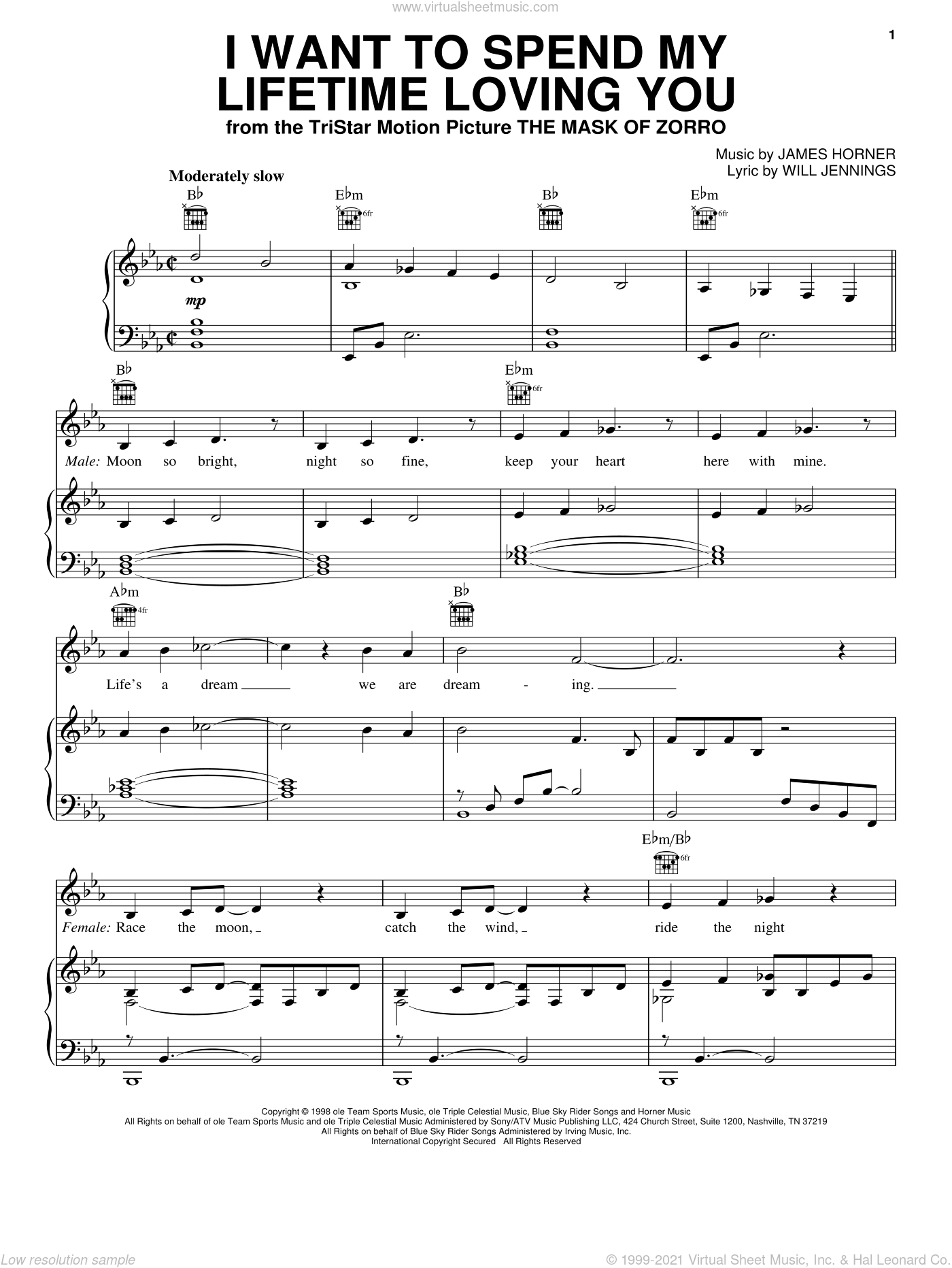 I Want To Spend My Lifetime Loving You sheet music for voice, piano or guitar by Marc Anthony and Tina Arena, James Horner and Will Jennings, wedding score, intermediate skill level